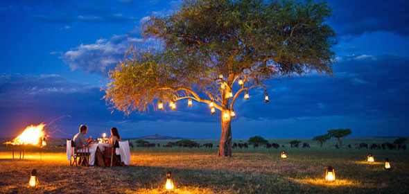 honeymoon_safari