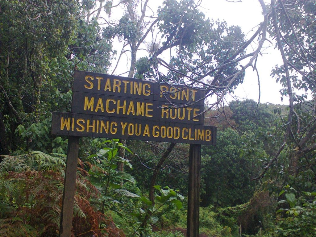 7 Days Kilimanjaro Climb - Machame Route