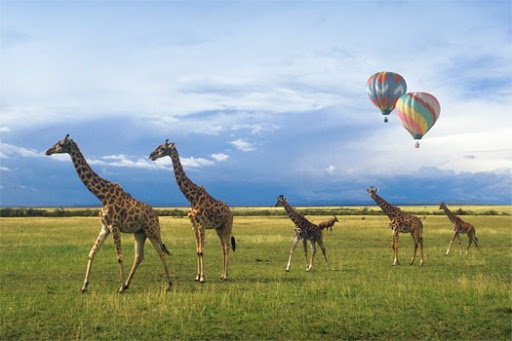 balloon-safaris