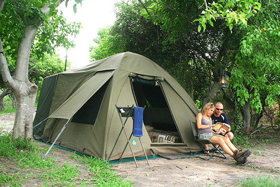 camping_safaris