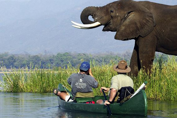 canoe-safari