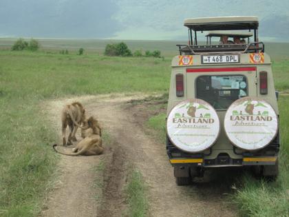 Tanzania Safari Rates